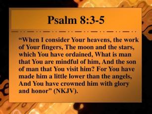 psalm-8-3-5-n.jpg