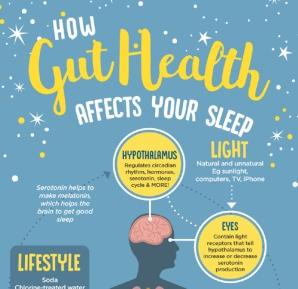 infographics_guthealth-sleep intro