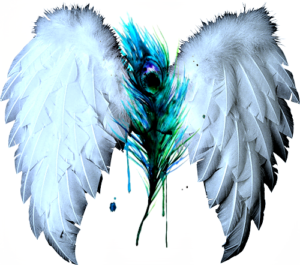 angel-wings-on-my-feather-2-300x265